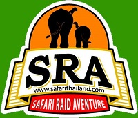 Safari Raid Adventure